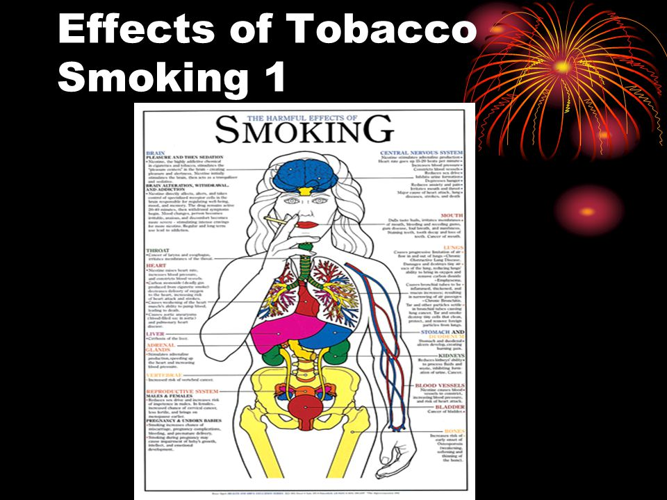 Effects of Tobacco Smoking 1