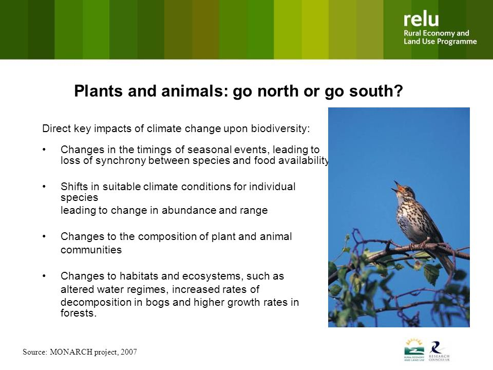 Plants and animals: go north or go south.