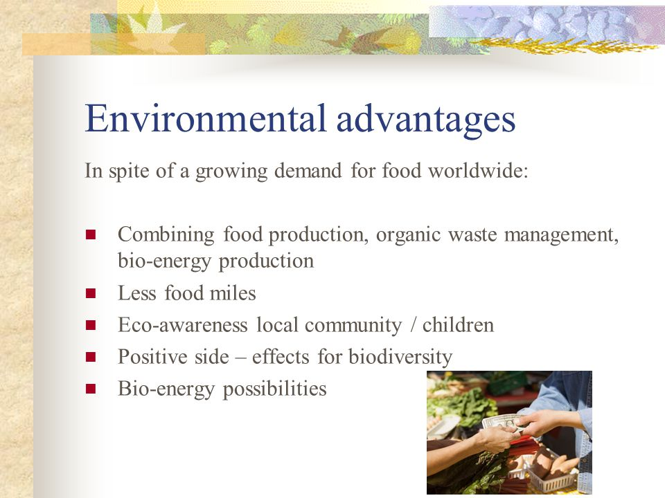 Environmental advantages In spite of a growing demand for food worldwide: Combining food production, organic waste management, bio-energy production Less food miles Eco-awareness local community / children Positive side – effects for biodiversity Bio-energy possibilities