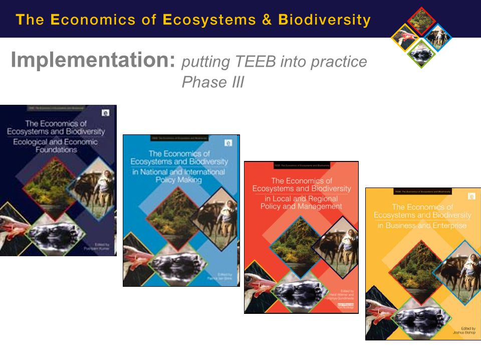 TEEB s main reports Implementation: putting TEEB into practice Phase III