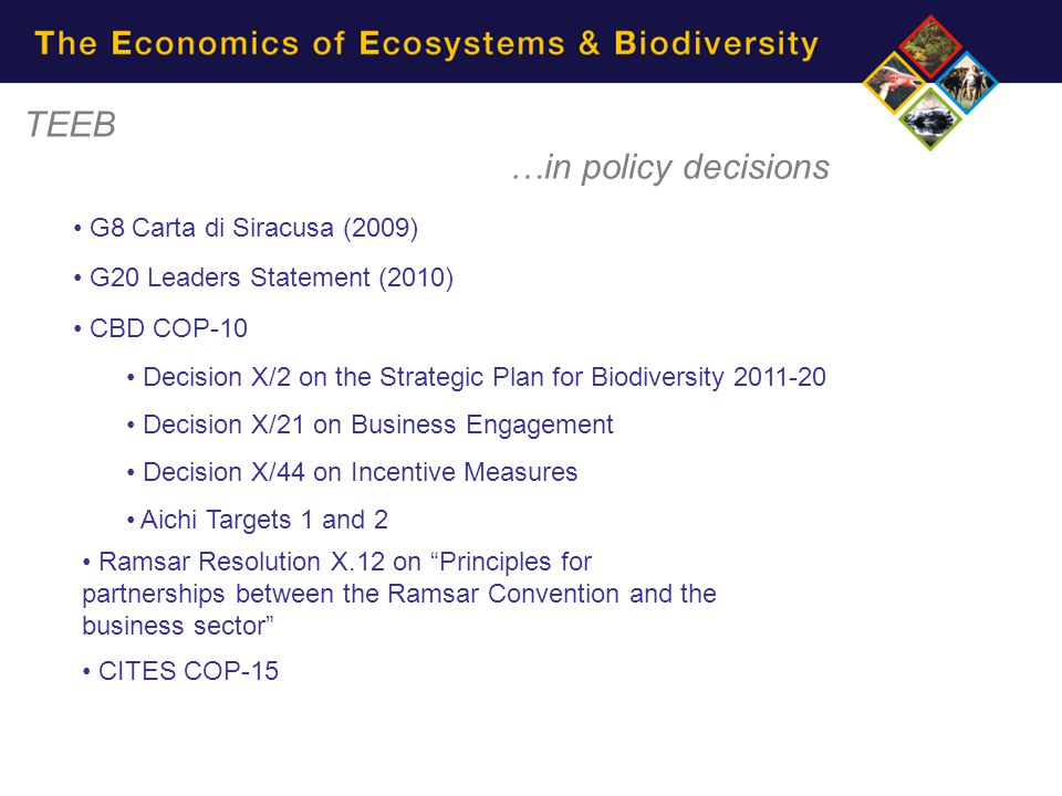 TEEB …in policy decisions G8 Carta di Siracusa (2009) G20 Leaders Statement (2010) CBD COP-10 Decision X/2 on the Strategic Plan for Biodiversity 2011