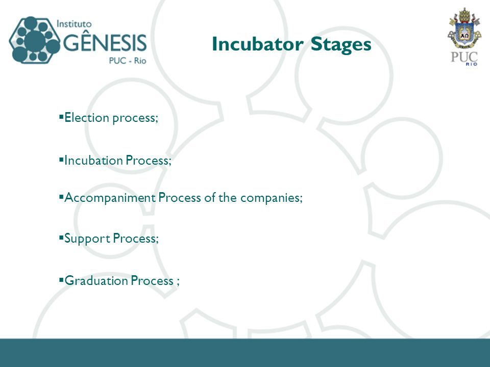 Incubator Stages Election process; Incubation Process; Accompaniment Process of the companies; Support Process; Graduation Process ;