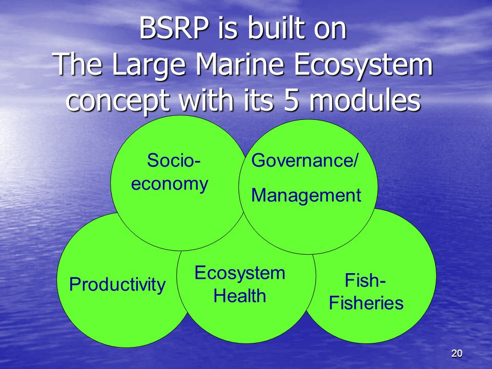 20 BSRP is built on The Large Marine Ecosystem concept with its 5 modules Productivity Ecosystem Health Fish- Fisheries Socio- economy Governance/ Management