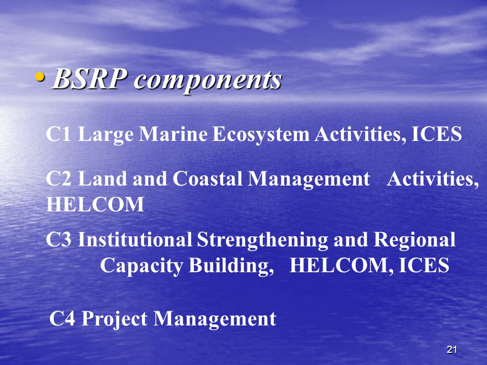 21 BSRP components BSRP components C1 Large Marine Ecosystem Activities, ICES C2 Land and Coastal Management Activities, HELCOM C3 Institutional Strengthening and Regional Capacity Building, HELCOM, ICES C4 Project Management