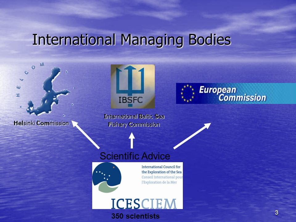 3 International Managing Bodies International Baltic Sea Fishery Commission Scientific Advice 350 scientists Helsinki Commission