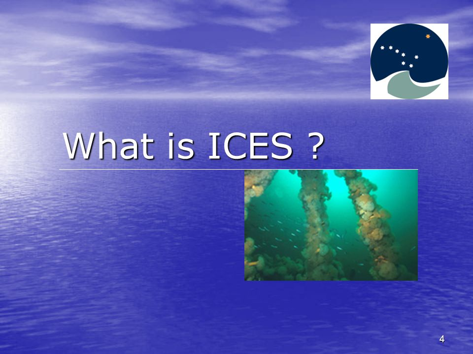 4 What is ICES