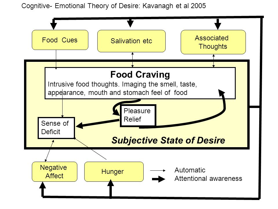Food Craving Intrusive food thoughts. Imaging the smell, taste, appearance, mouth and stomach feel of food Sense of Deficit Pleasure Relief Food Cues