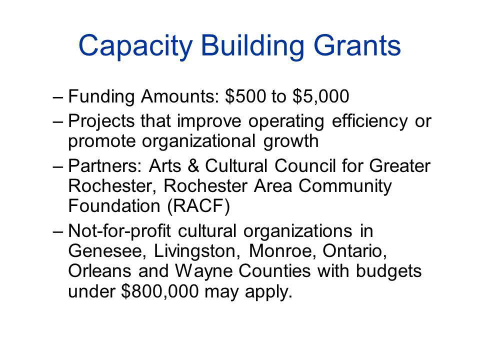 Capacity Building Grants –Funding Amounts: $500 to $5,000 –Projects that improve operating efficiency or promote organizational growth –Partners: Arts & Cultural Council for Greater Rochester, Rochester Area Community Foundation (RACF) –Not-for-profit cultural organizations in Genesee, Livingston, Monroe, Ontario, Orleans and Wayne Counties with budgets under $800,000 may apply.