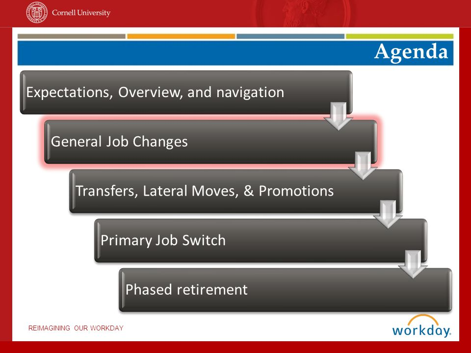REIMAGINING OUR WORKDAY Job Changes General Changes Transfers Lateral Moves Promotions Switch Primary Job Phased Retirement Switch Primary Job