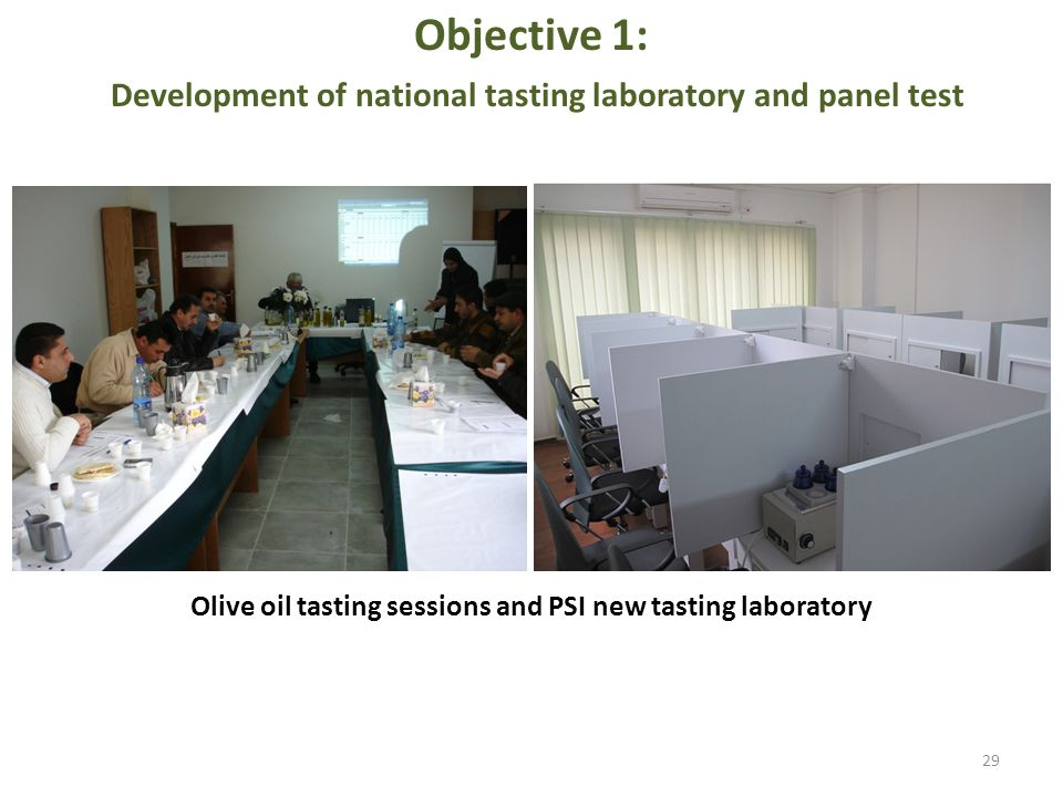 Objective 1: Development of national tasting laboratory and panel test 29 Olive oil tasting sessions and PSI new tasting laboratory