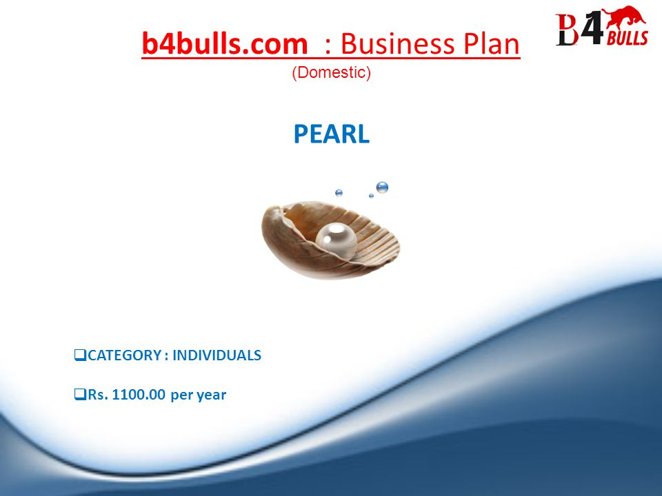 b4bulls.com : Business Plan CATEGORY : INDIVIDUALS Rs. 1100.00 per year PEARL (Domestic)