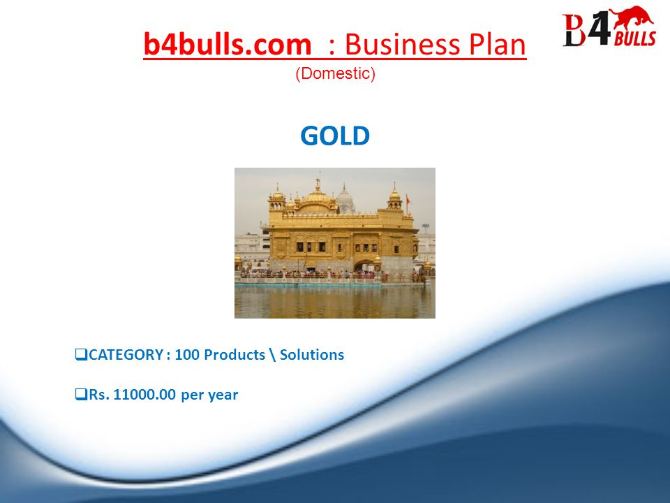 b4bulls.com : Business Plan GOLD CATEGORY : 100 Products \ Solutions Rs.