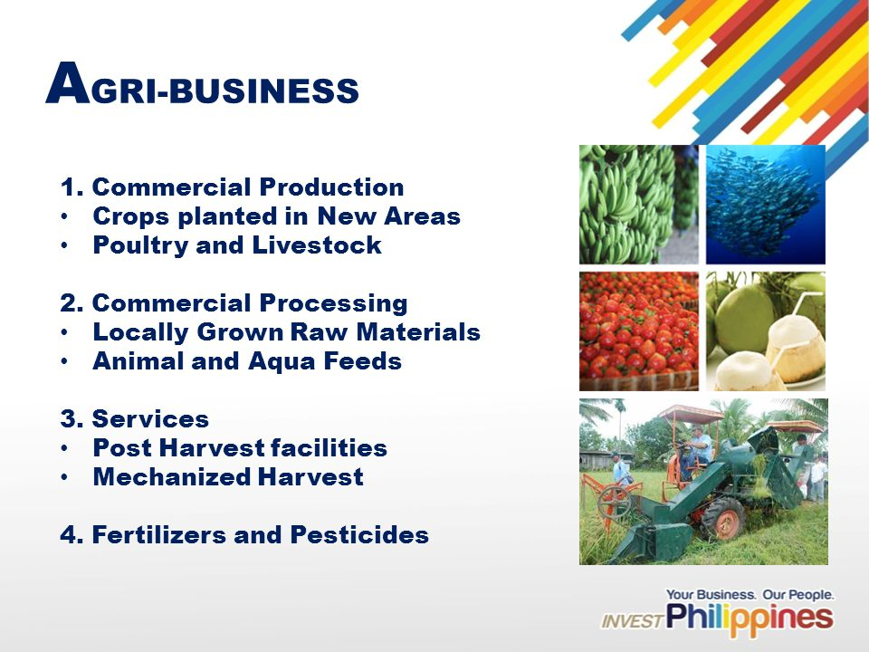 A GRI-BUSINESS 1. Commercial Production Crops planted in New Areas Poultry and Livestock 2.