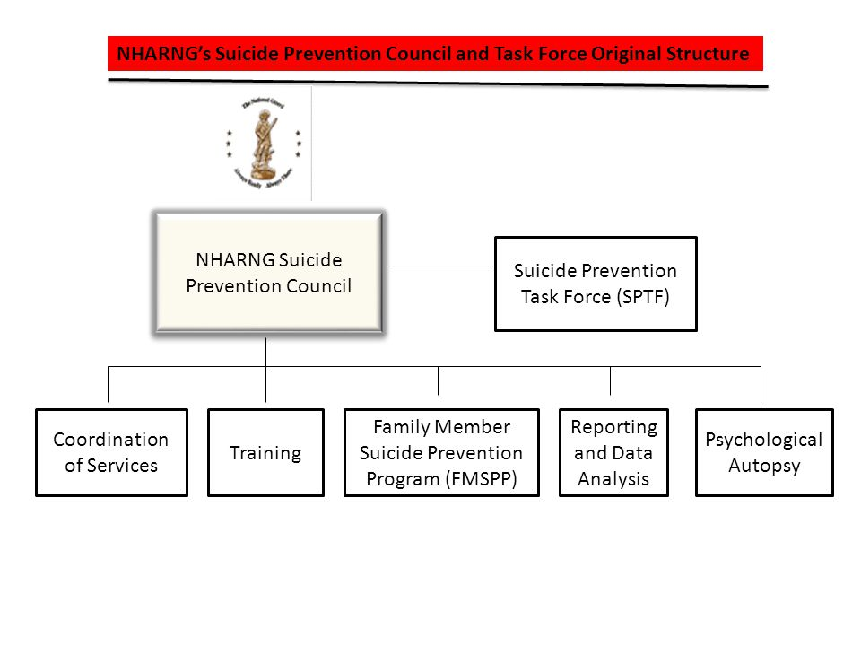 State of New Hampshires Suicide Prevention Council Original Structure Suicide Prevention Council Military and Veterans Professional Practices Communications Data and Collection Analysis Public Policy National Violent Death Reporting Suicide Fatality Review