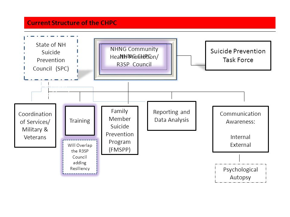 Current Structure of the CHPC NHNG Community Health Promotion/ R3SP Council Suicide Prevention Task Force Coordination of Services/ Military & Veterans Training Family Member Suicide Prevention Program (FMSPP) Reporting and Data Analysis Communication Awareness: Internal External Psychological Autopsy Will Overlap the R3SP Council adding Resiliency State of NH Suicide Prevention Council (SPC) Suicide Prevention Council (SPC) NHNG CHPC