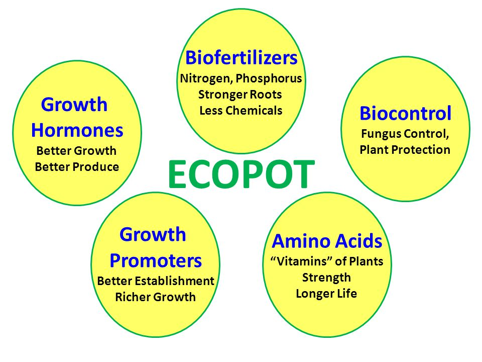 Growth Promoters Better Establishment Richer Growth Growth Hormones Better Growth Better Produce Biofertilizers Nitrogen, Phosphorus Stronger Roots Le
