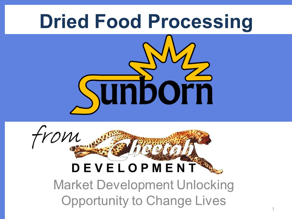 Dried Food Processing Market Development Unlocking Opportunity to Change Lives 1 from