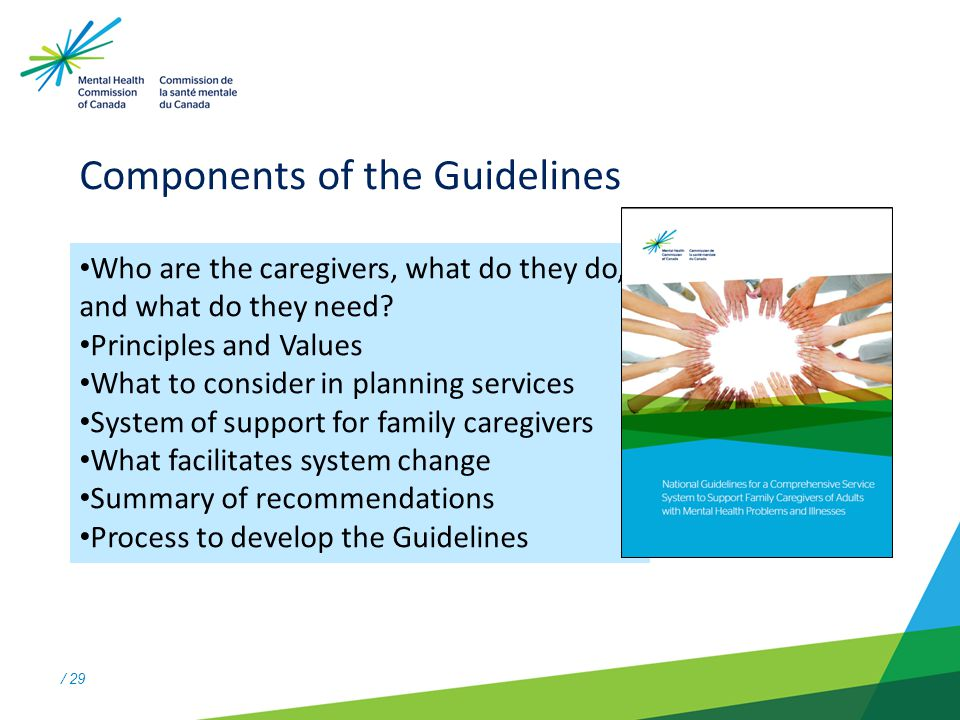 / 29 Components of the Guidelines Who are the caregivers, what do they do, and what do they need.