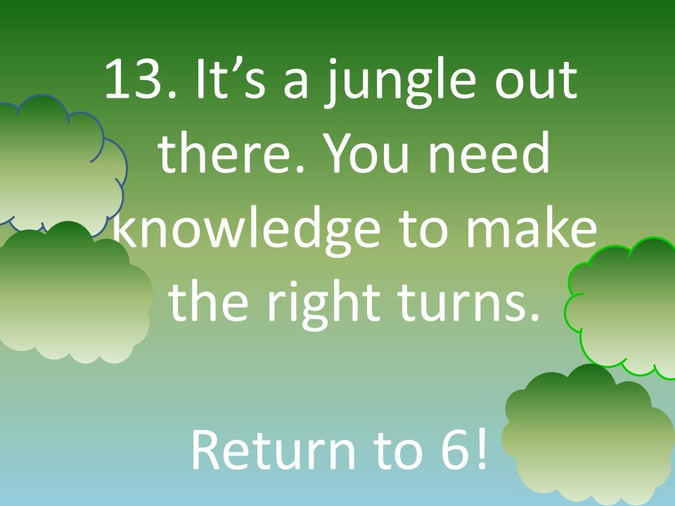 13. Its a jungle out there. You need knowledge to make the right turns. Return to 6!