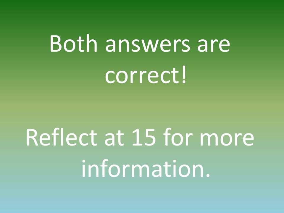 Both answers are correct! Reflect at 15 for more information.