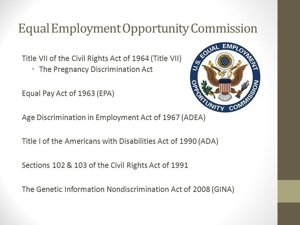 What is Equal Opportunity Equal access to apply for jobs Equal treatment in the hiring process Laws enacted to protect against discrimination based on certain characteristics