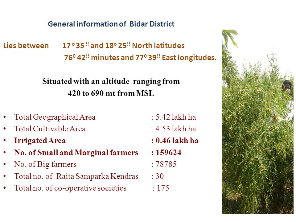 General information of Bidar District Lies between 17 o 35 !! and 18 o 25 !! North latitudes 76 0 42 !! minutes and 77 0 39 !! East longitudes. Situat