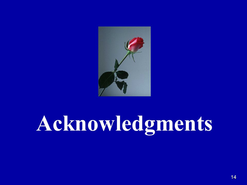 14 Acknowledgments