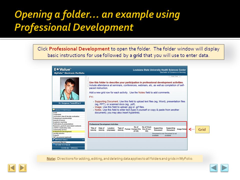 Click Professional Development to open the folder. The folder window will display basic instructions for use followed by a grid that you will use to e