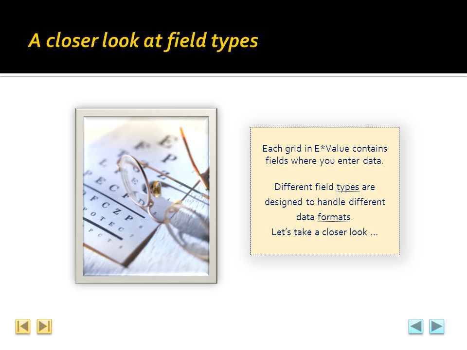 Each grid in E*Value contains fields where you enter data. Different field types are designed to handle different data formats. Lets take a closer loo