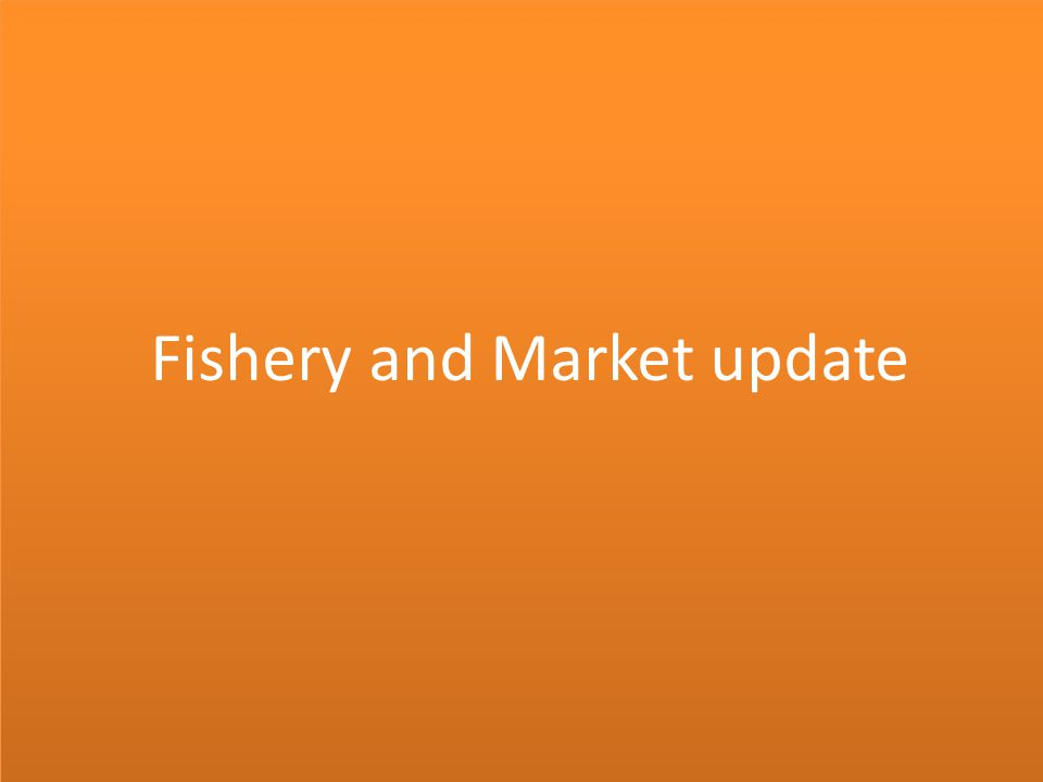 Fishery and Market update
