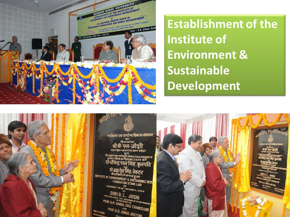 Establishment of the Institute of Environment & Sustainable Development