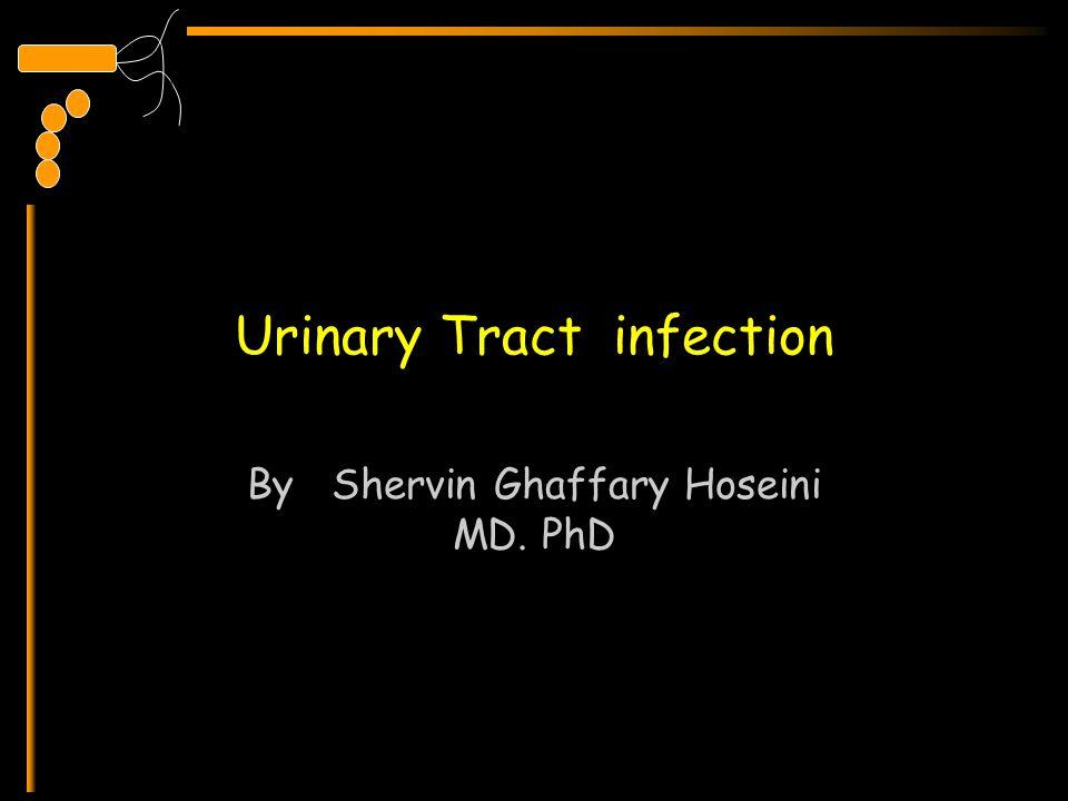 Urinary Tract infection By Shervin Ghaffary Hoseini MD. PhD