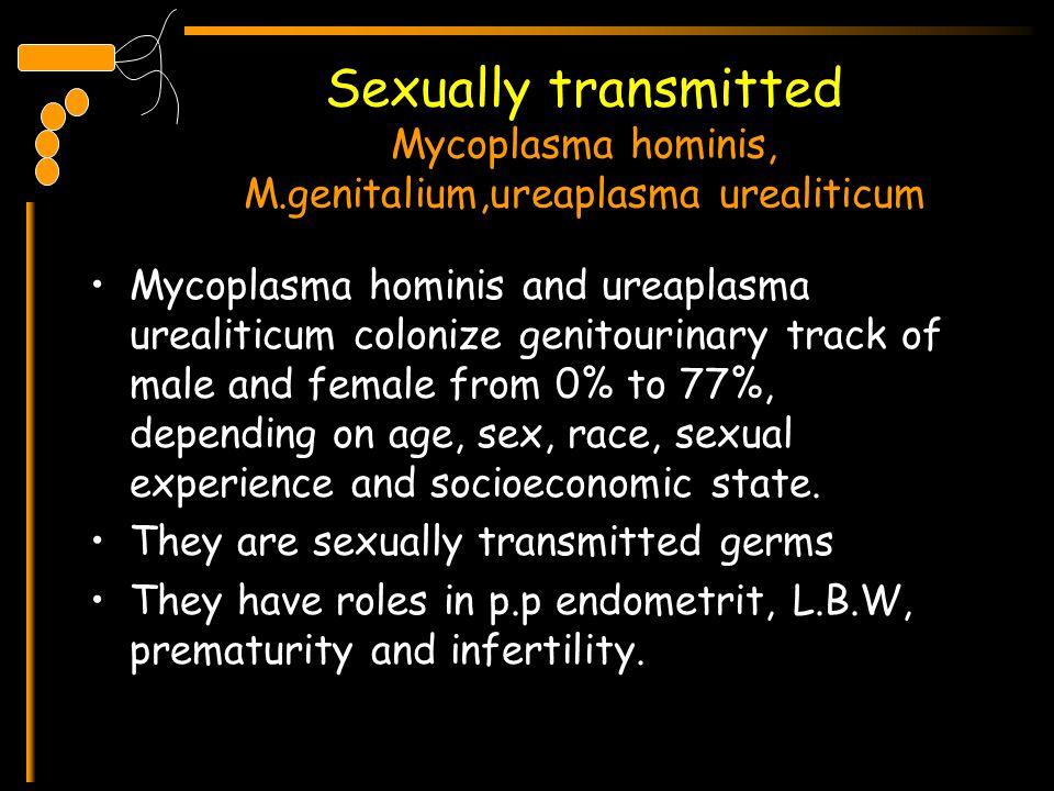 Sexually transmitted Mycoplasma hominis, M.genitalium,ureaplasma urealiticum Mycoplasma hominis and ureaplasma urealiticum colonize genitourinary trac