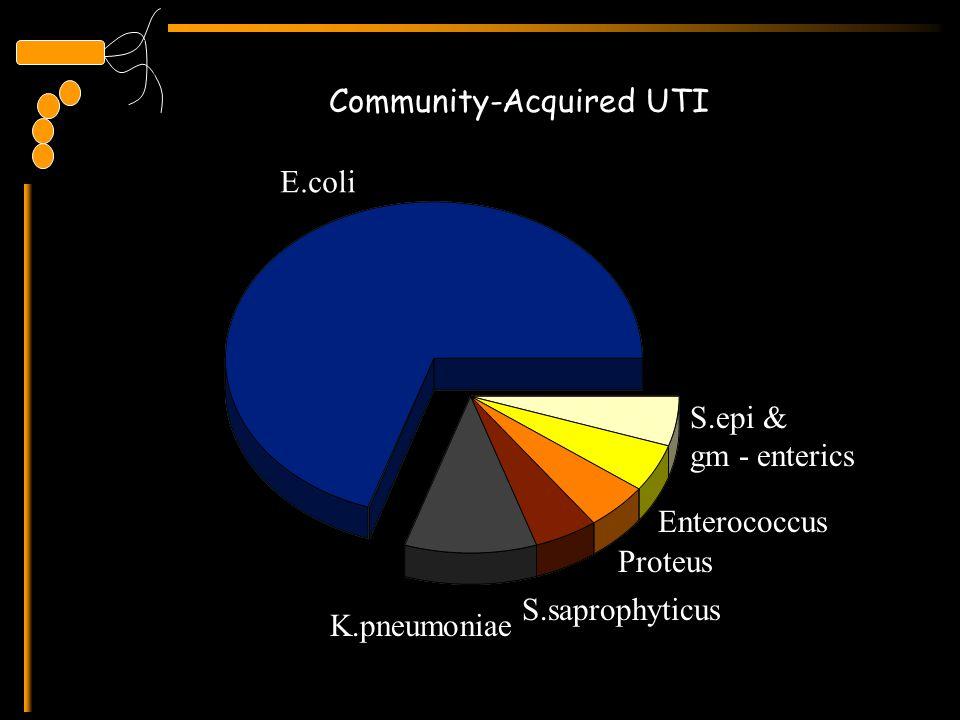 Community-Acquired UTI E.coli K.pneumoniae Proteus S.saprophyticus S.epi & gm - enterics Enterococcus