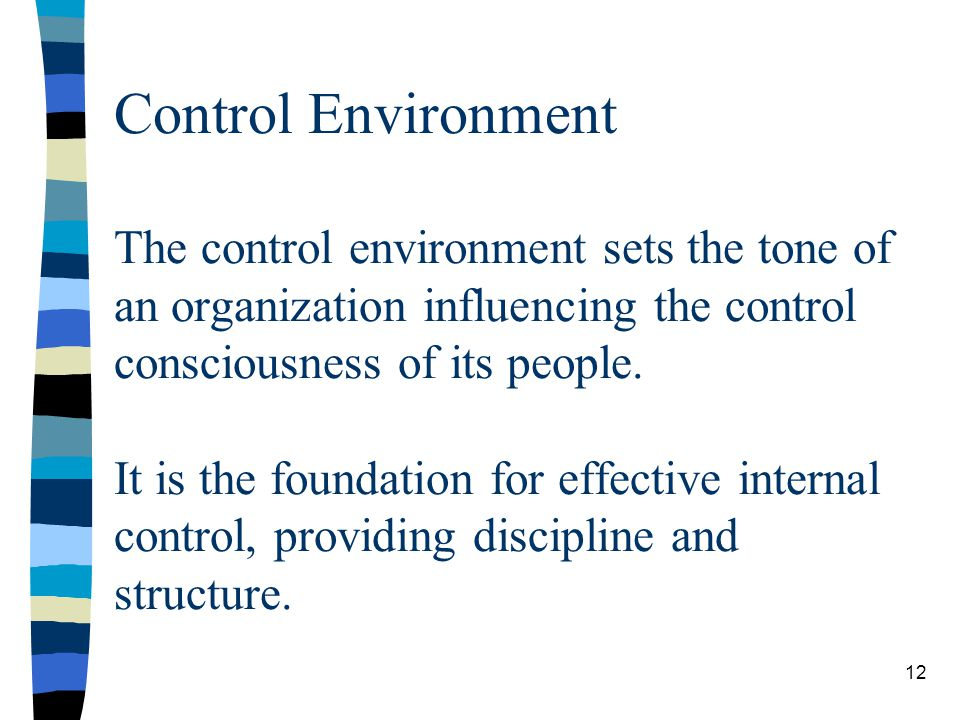 Control Environment The control environment sets the tone of an organization influencing the control consciousness of its people.