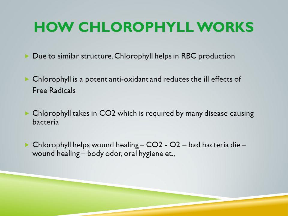 HOW CHLOROPHYLL WORKS Due to similar structure, Chlorophyll helps in RBC production Chlorophyll is a potent anti-oxidant and reduces the ill effects o