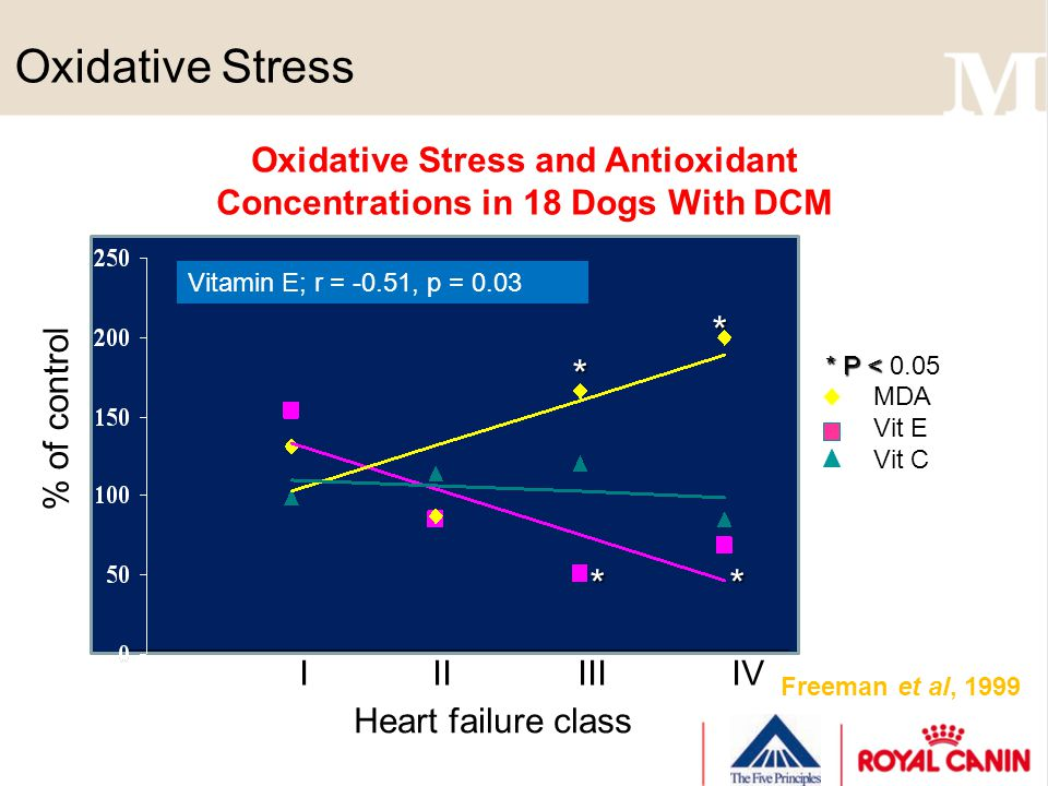 Oxidative Stress Freeman et al, 1999 Heart failure class % of control MDA Vit E Vit C I II III IV Oxidative Stress and Antioxidant Concentrations in 1