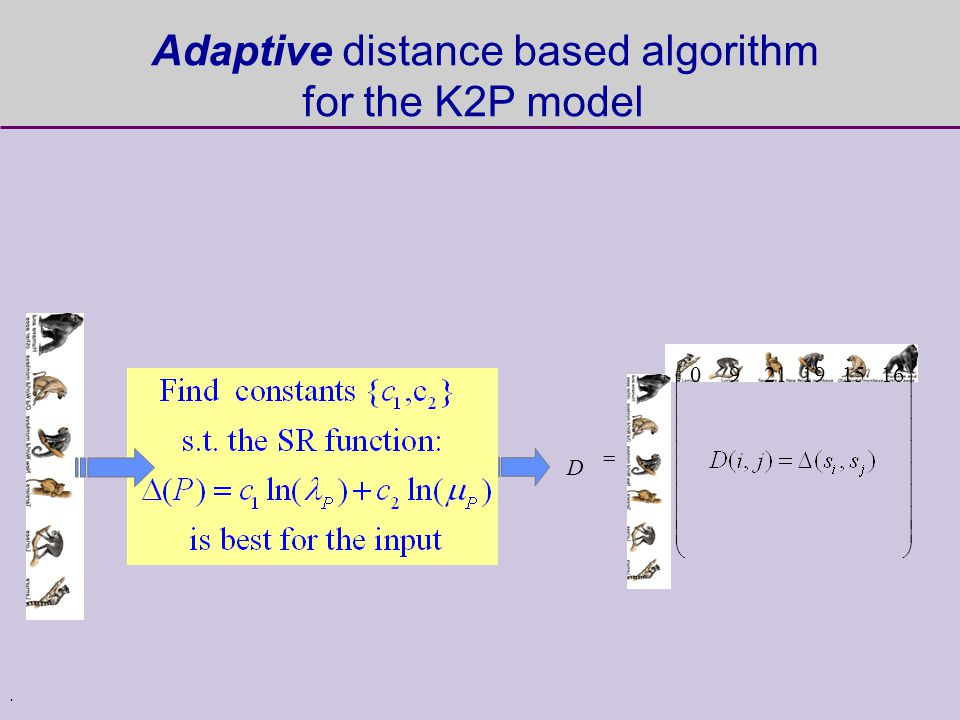 . D 1615192190 Adaptive distance based algorithm for the K2P model