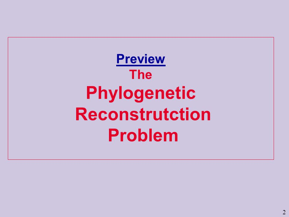 2 Preview The Phylogenetic Reconstrutction Problem