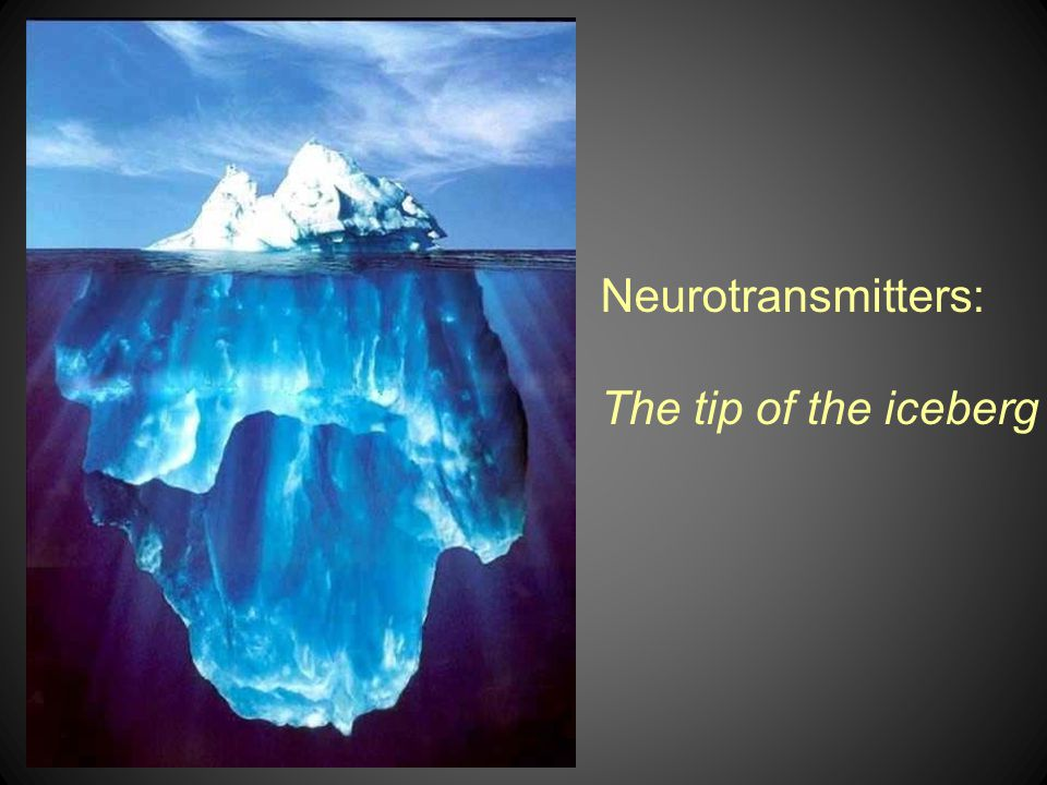 Neurotransmitters: The tip of the iceberg