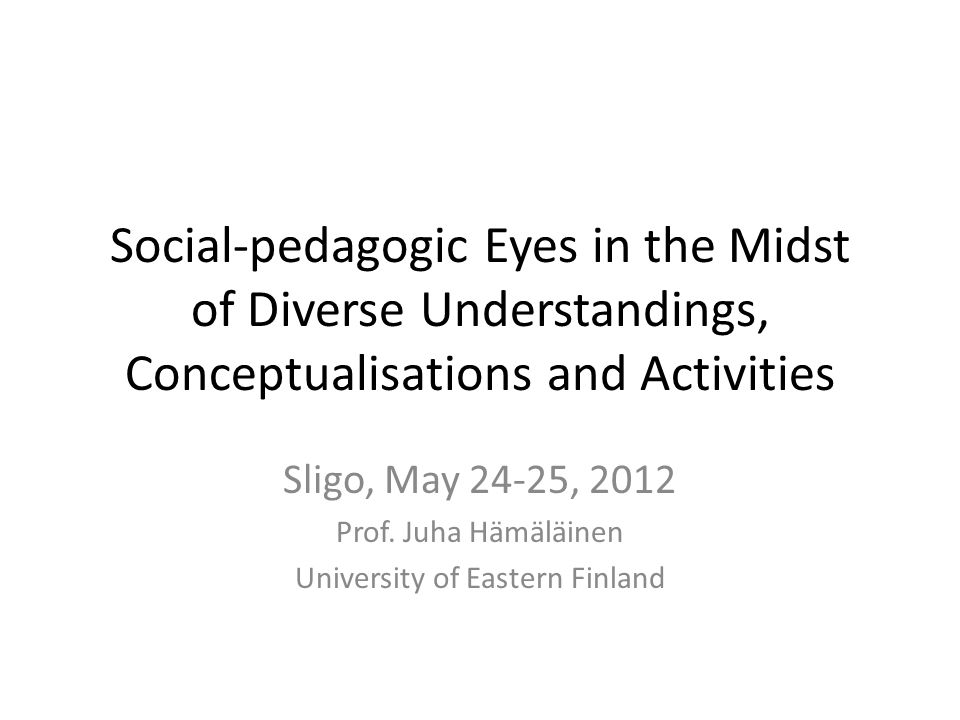 Social-pedagogic Eyes in the Midst of Diverse Understandings, Conceptualisations and Activities Sligo, May 24-25, 2012 Prof.