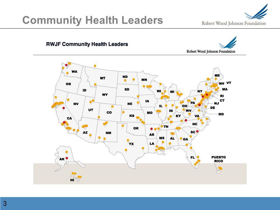3 Community Health Leaders