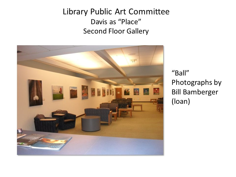 Library Public Art Committee Davis as Place Second Floor Gallery Ball Photographs by Bill Bamberger (loan)