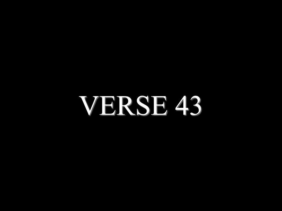 VERSE 43