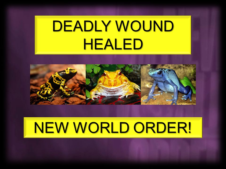 NEW WORLD ORDER! DEADLY WOUND HEALED