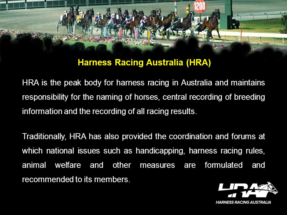 Harness Racing Australia (HRA) HRA is the peak body for harness racing in Australia and maintains responsibility for the naming of horses, central rec