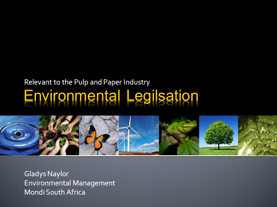 Relevant to the Pulp and Paper Industry Gladys Naylor Environmental Management Mondi South Africa