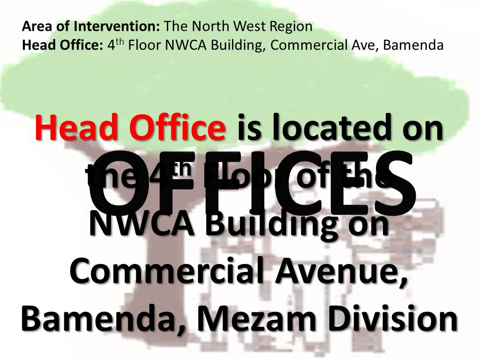 Head Office is located on the 4 th Floor of the NWCA Building on Commercial Avenue, Bamenda, Mezam Division Area of Intervention: The North West Region Head Office: 4 th Floor NWCA Building, Commercial Ave, Bamenda