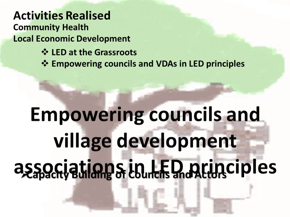Capacity Building of Councils and Actors Capacity Building of Councils and Actors Activities Realised LED at the Grassroots Community Health Local Eco