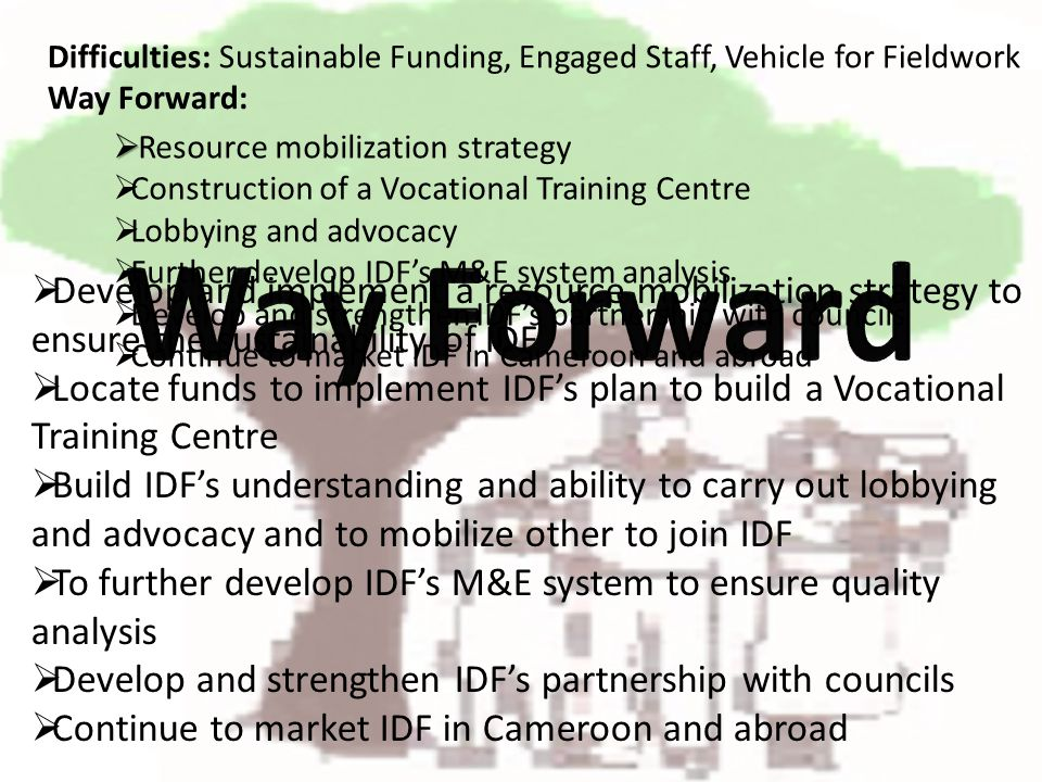 Develop and implement a resource mobilization strategy to ensure the sustainability of IDF Locate funds to implement IDFs plan to build a Vocational Training Centre Build IDFs understanding and ability to carry out lobbying and advocacy and to mobilize other to join IDF To further develop IDFs M&E system to ensure quality analysis Develop and strengthen IDFs partnership with councils Continue to market IDF in Cameroon and abroad Difficulties: Sustainable Funding, Engaged Staff, Vehicle for Fieldwork Resource mobilization strategy Construction of a Vocational Training Centre Lobbying and advocacy Further develop IDFs M&E system analysis Develop and strengthen IDFs partnership with councils Continue to market IDF in Cameroon and abroad Way Forward: